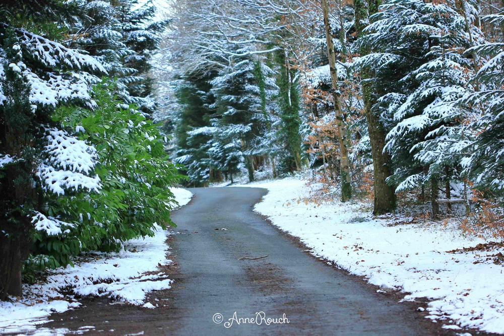 route & neige