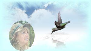 colibri eau2