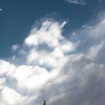 Dans le ciel
